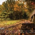 Pfad der Stille im Goldenen Herbst